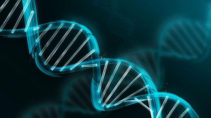Na czym polega diagnostyka genetyczna?